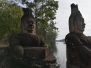 Angkor Foresta di Pietra