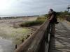 Pedalata per le Riserve Naturali che circondano la laguna di Grado
