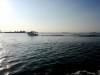 Escursione in barca sul trimarano alla scoperta della laguna