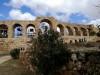 Tra le rovine di Jerash